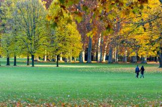 parc de la tete d'or automne