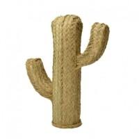 cactus-en-alfa-hauteur-39-cm