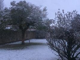 neige